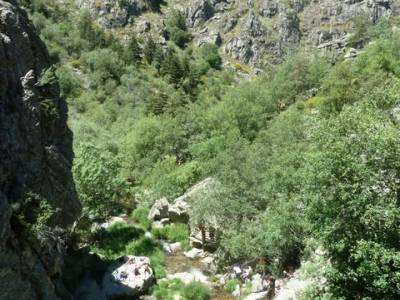 Senderismo valle Río Lozoya - Río Aguilón y Cascada del Purgatorio; excursiones desde; escalada